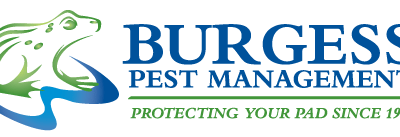 What are the safety guides for pest control?